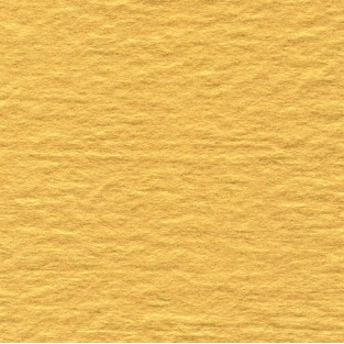 Tissue - 20x30 - 10pk - Gold Leaf