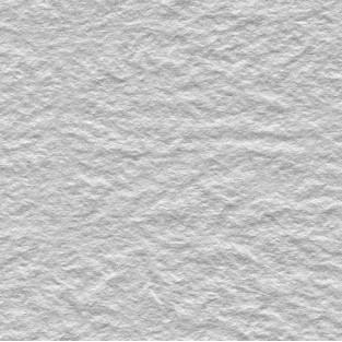 Tissue - 20x30 - 10pk - Silver Leaf