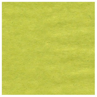 Tissue -  Pistachio 24 sheets