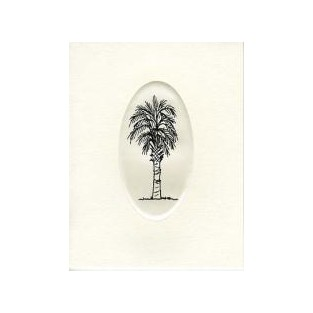 Scrimshaw Card - 10ct with envelope - 4.25x5.5 - Palmetto Tree