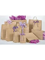 Brown and White Kraft Handle Gift Bags